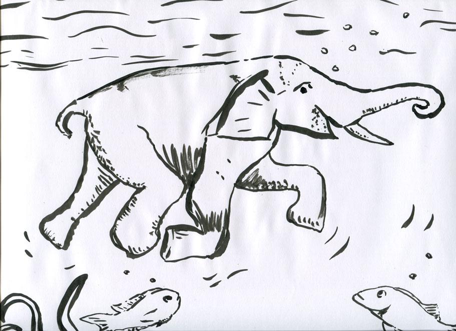 elefantkannschwimmen